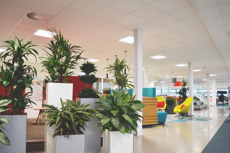 Verbouwing kantoor Heembouw Rotterdam